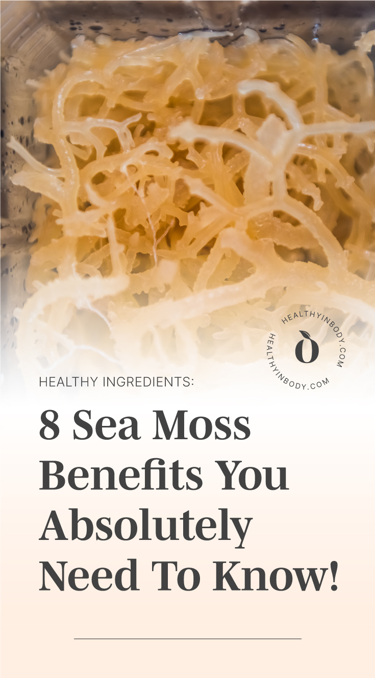 """Close-up to dried sea moss in a blender followed by text area which says """"Healthy Ingredients 8 Sea Moss Benefits You Absolutely Need To Know!"""" next to the HIB mark"""
