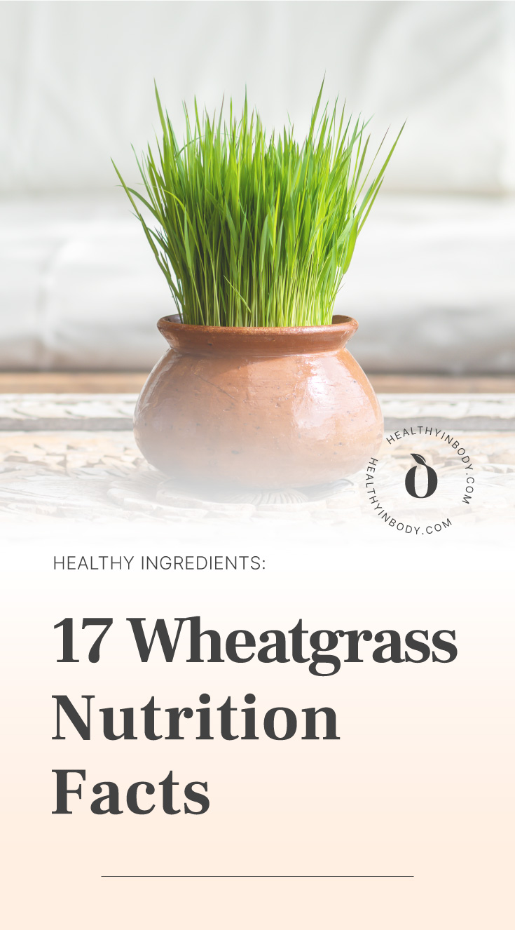 "A pot of wheatgrass followed by text area which says ""Healthy Ingredients: 17 Wheatgrass Nutrition Facts"" next to the HIB mark"
