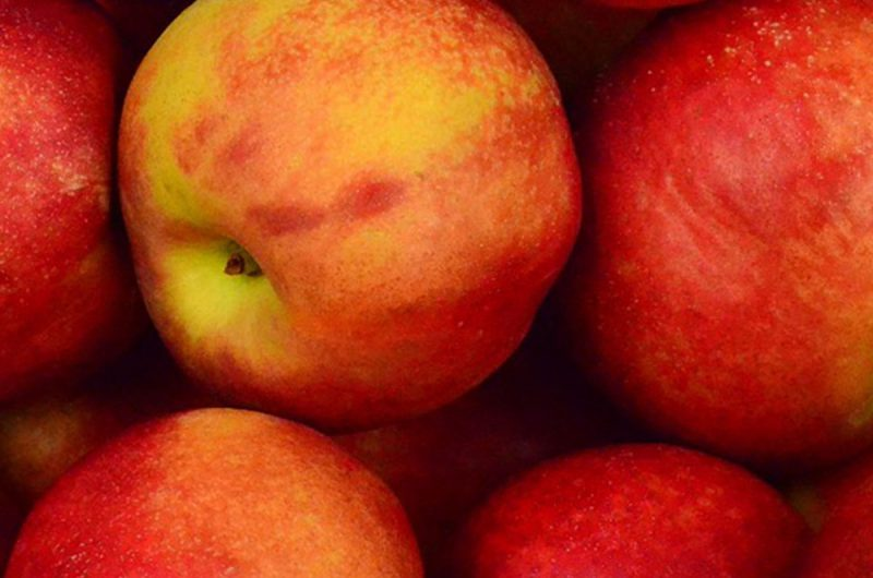 Apples' Health Benefits And Nutritional Content In Brief | healthyinbody.com